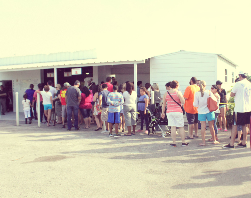Knaus Berry Farm Long lines
