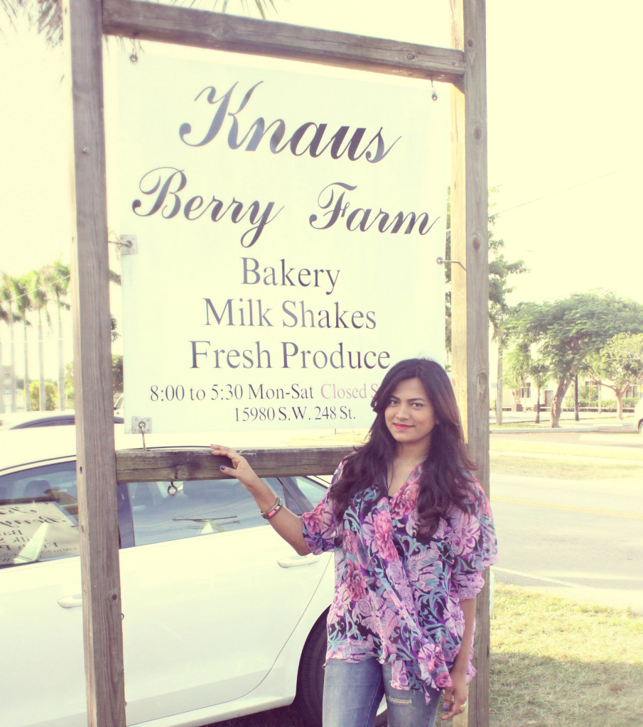 Knaus Berry Farm Miami Fashion Blogger