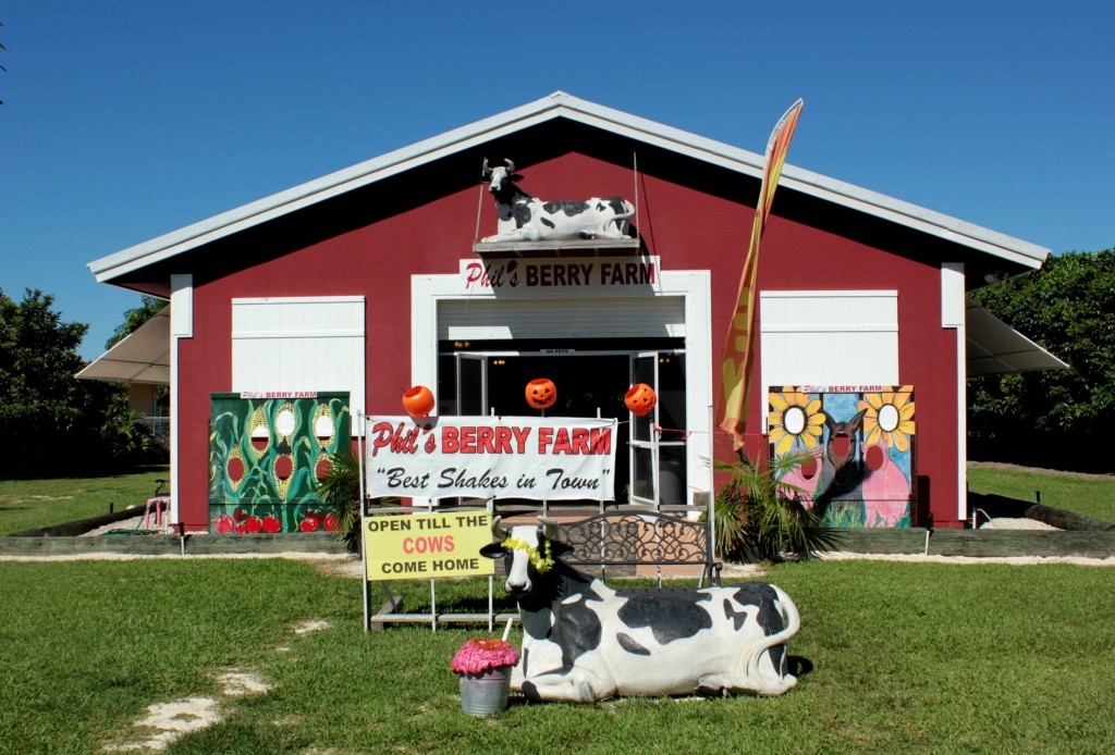 Phils Berry Farm Homestead Redland Miamii