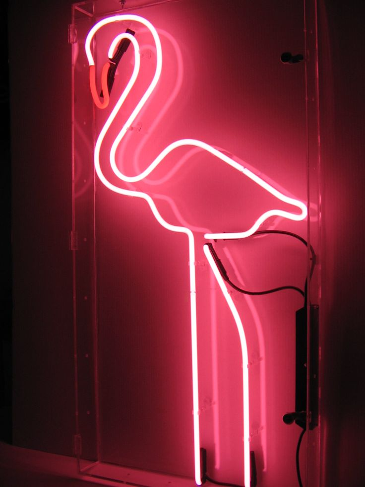 pink neon lights flamingo fashion chic stylista by miami fashion