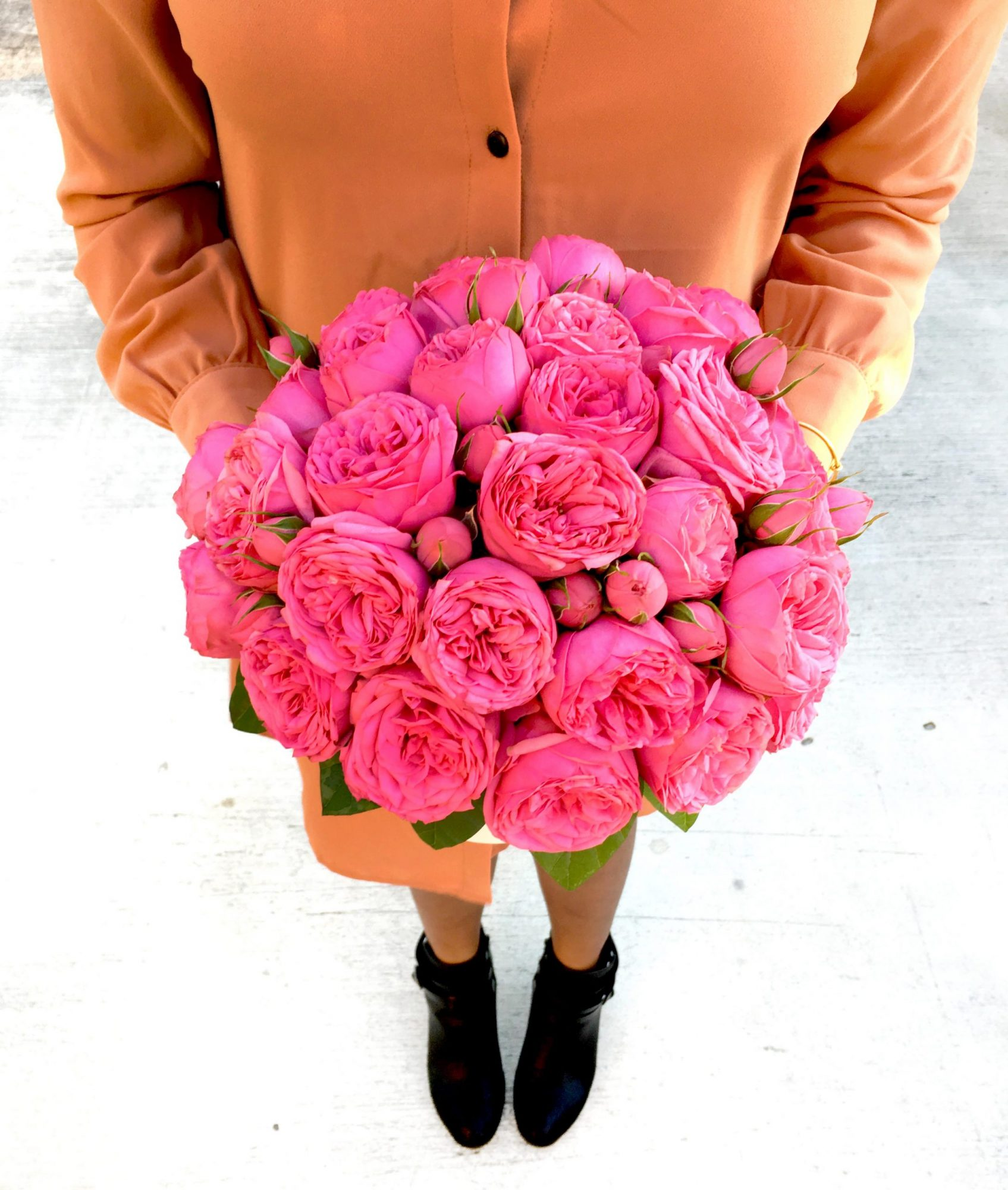 Miami Roses Flower Delivery Olyve