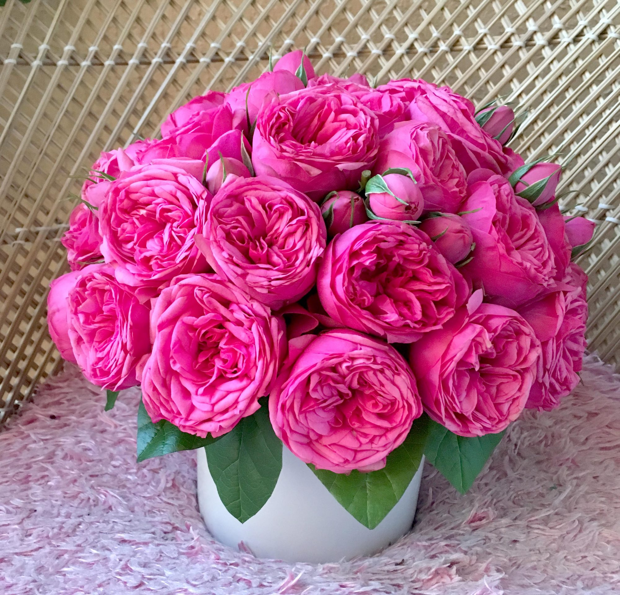 Olyve Pink Roses Fashion Flower Delivery Miami