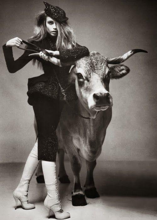 Taurus Bull Inspiration