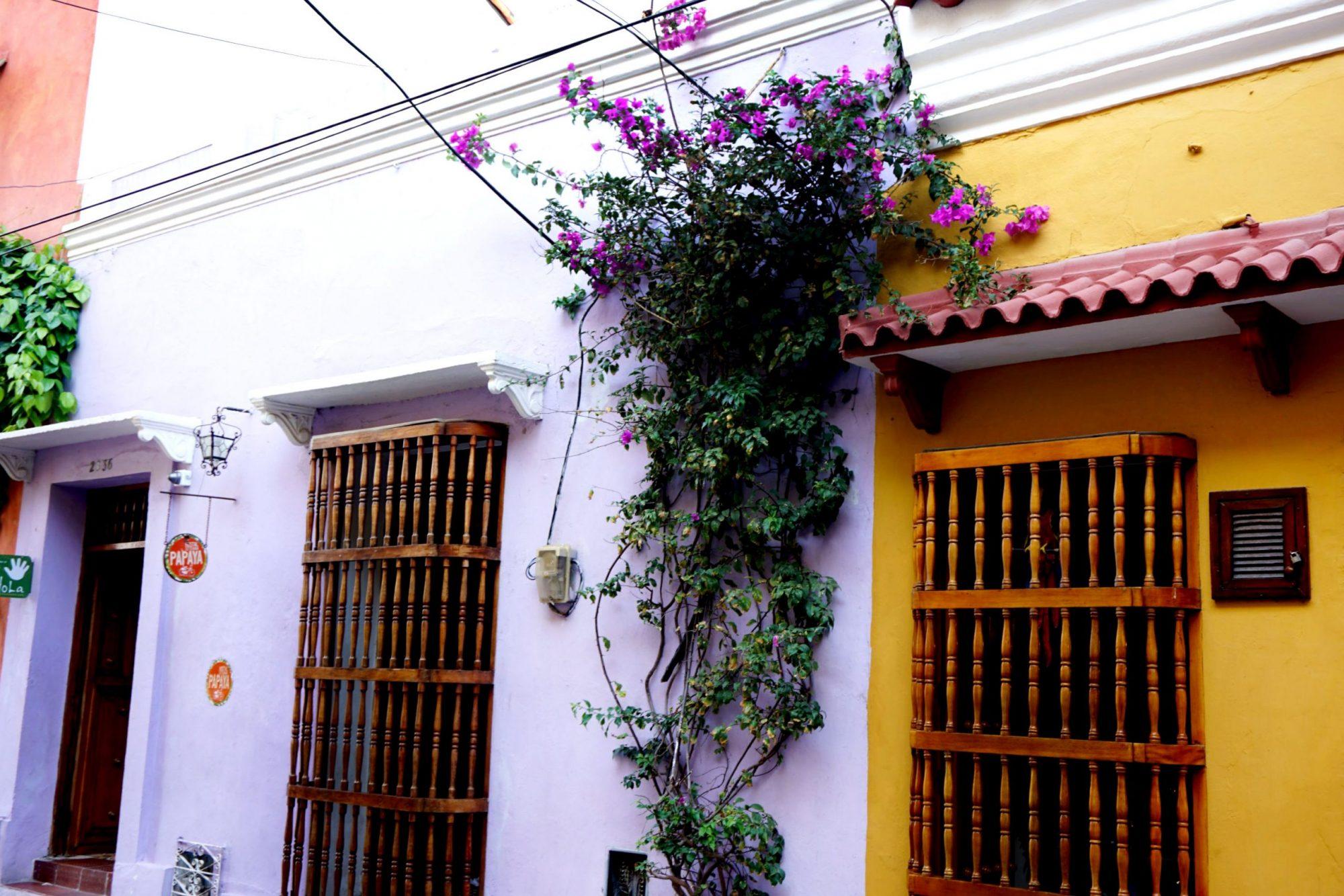 Getsemaní Cartagena Flowers