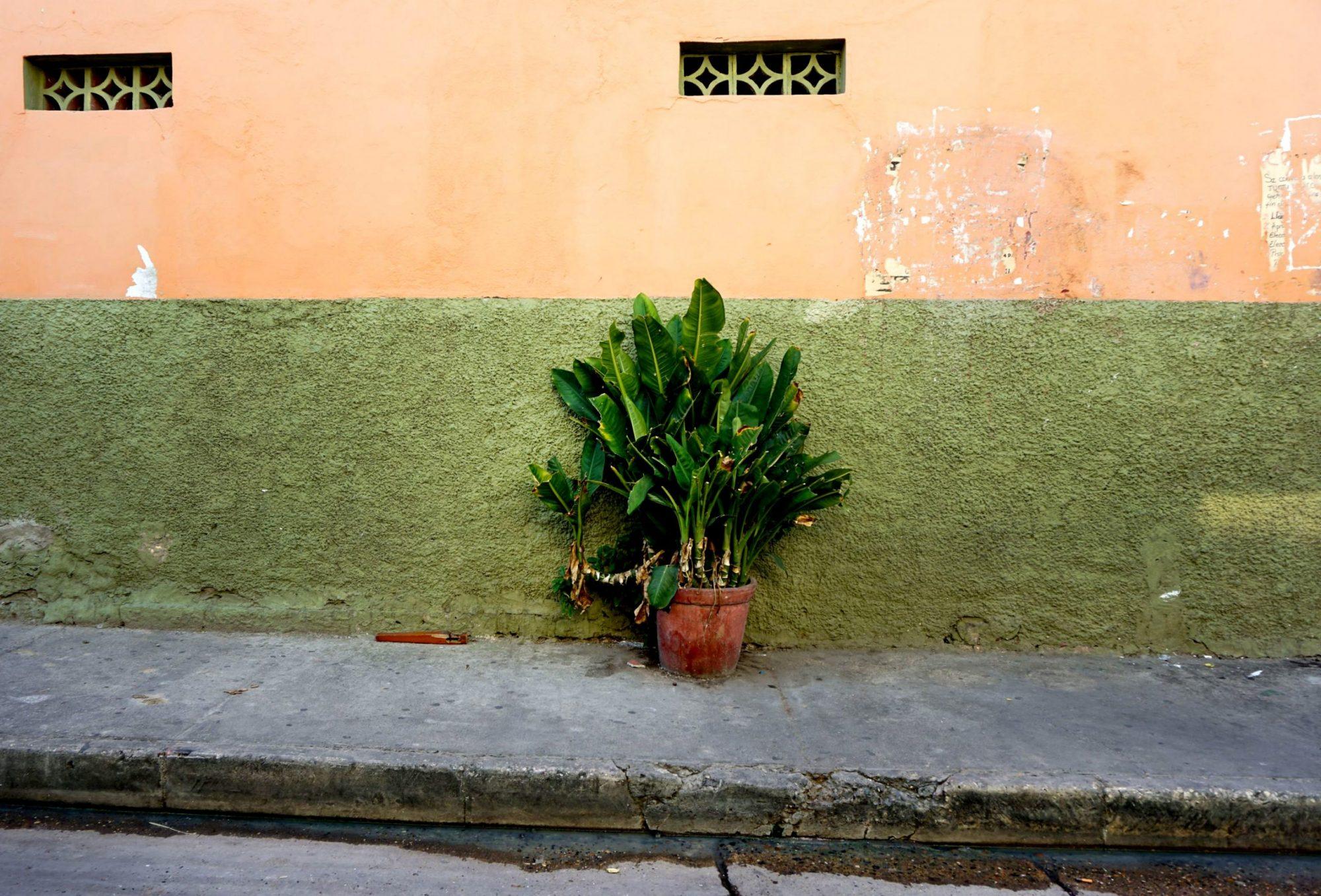 Getsemaní Cartagena Wall