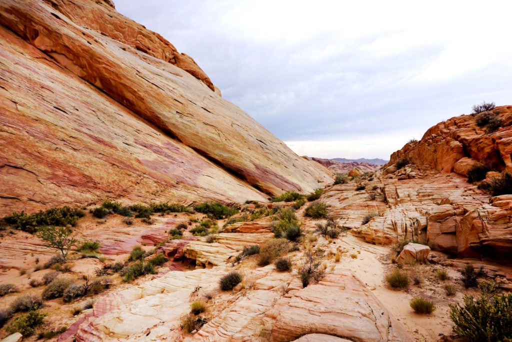 Visit Nevada Valley of Fire