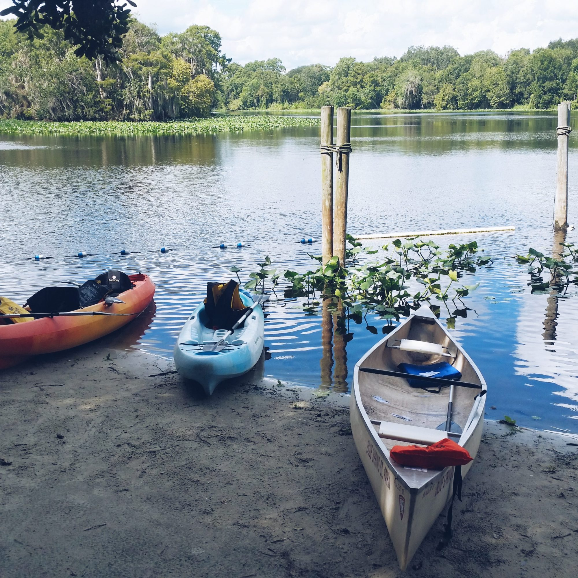 Blue Spring State Park Activities