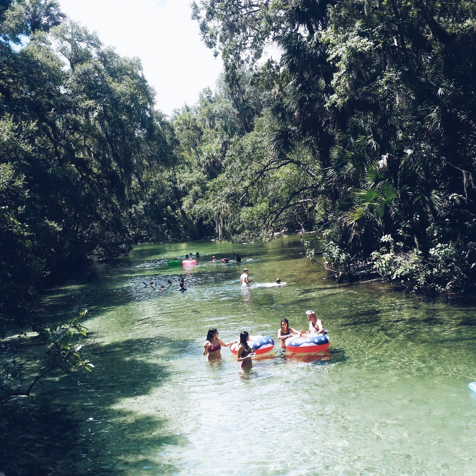 Blue Spring State Park Orlando