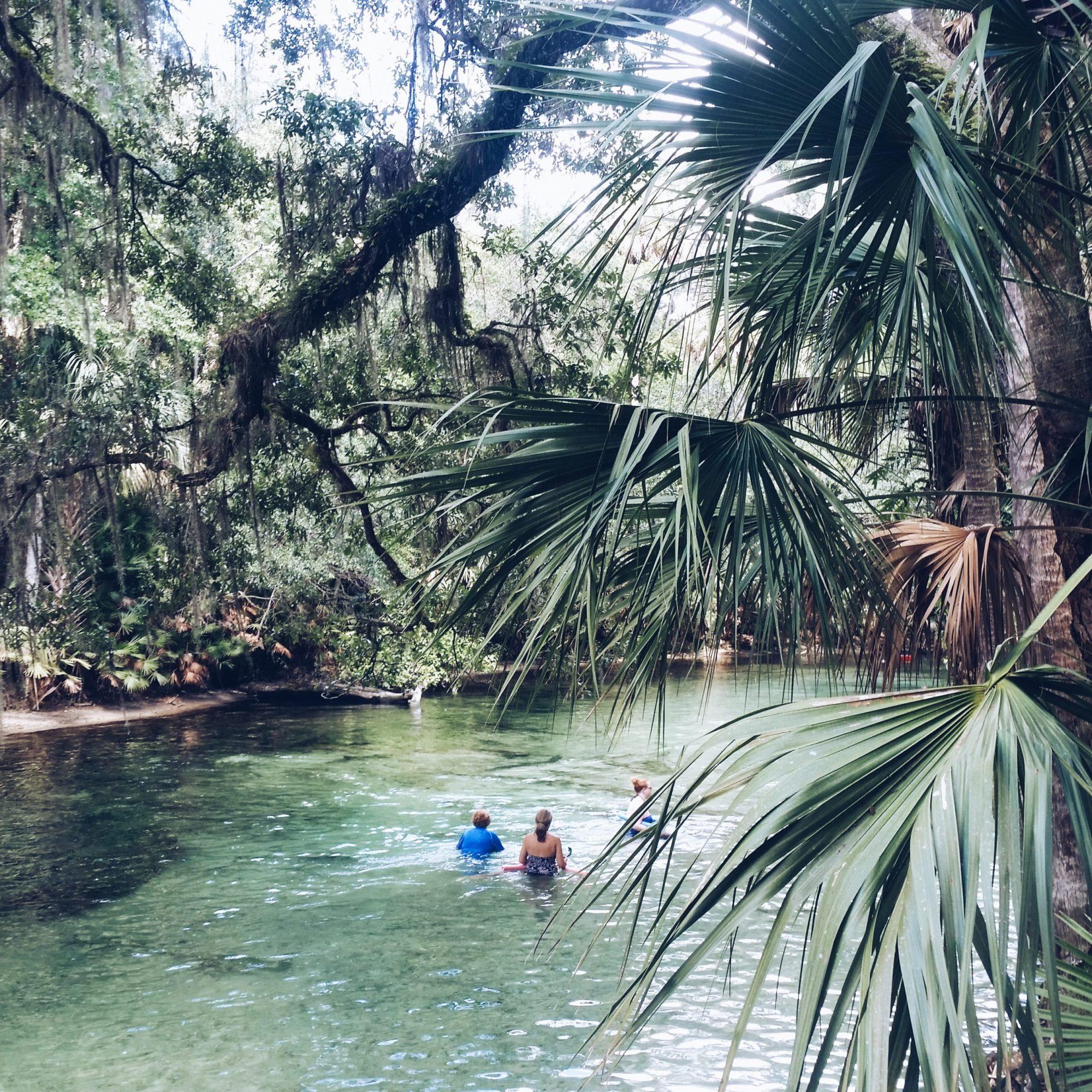 Blue Spring State Park TravelBlog