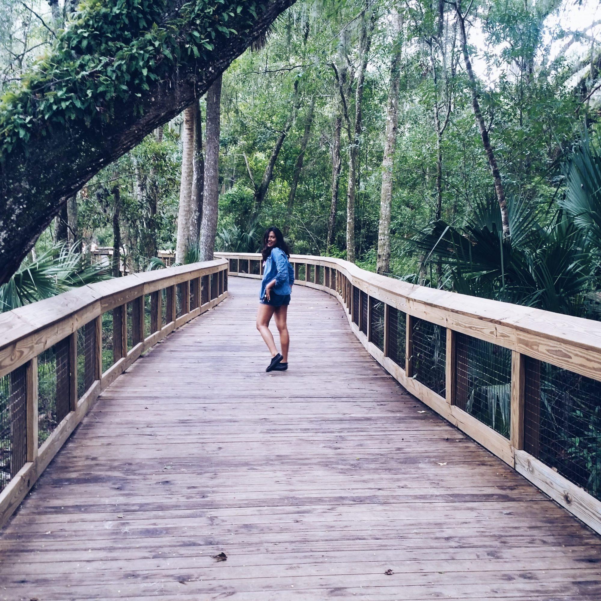 Travel Blogger Chic Stylista