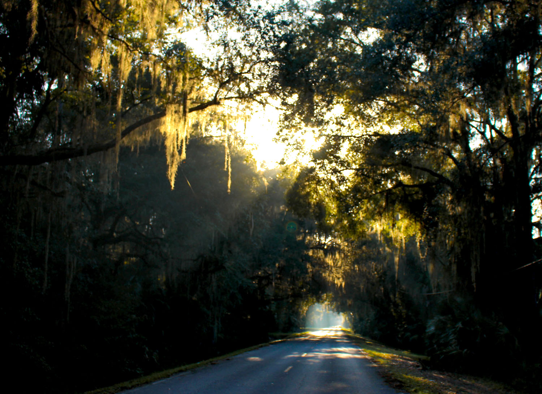 visit-florida-miconapy-gainesville