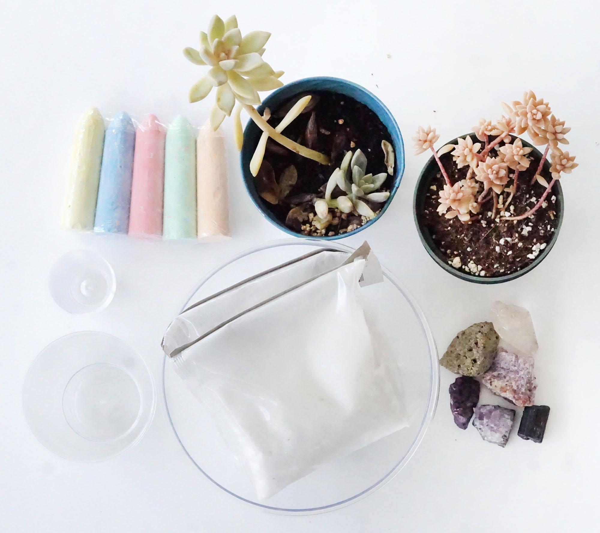 Table Zen Garden Supplies: