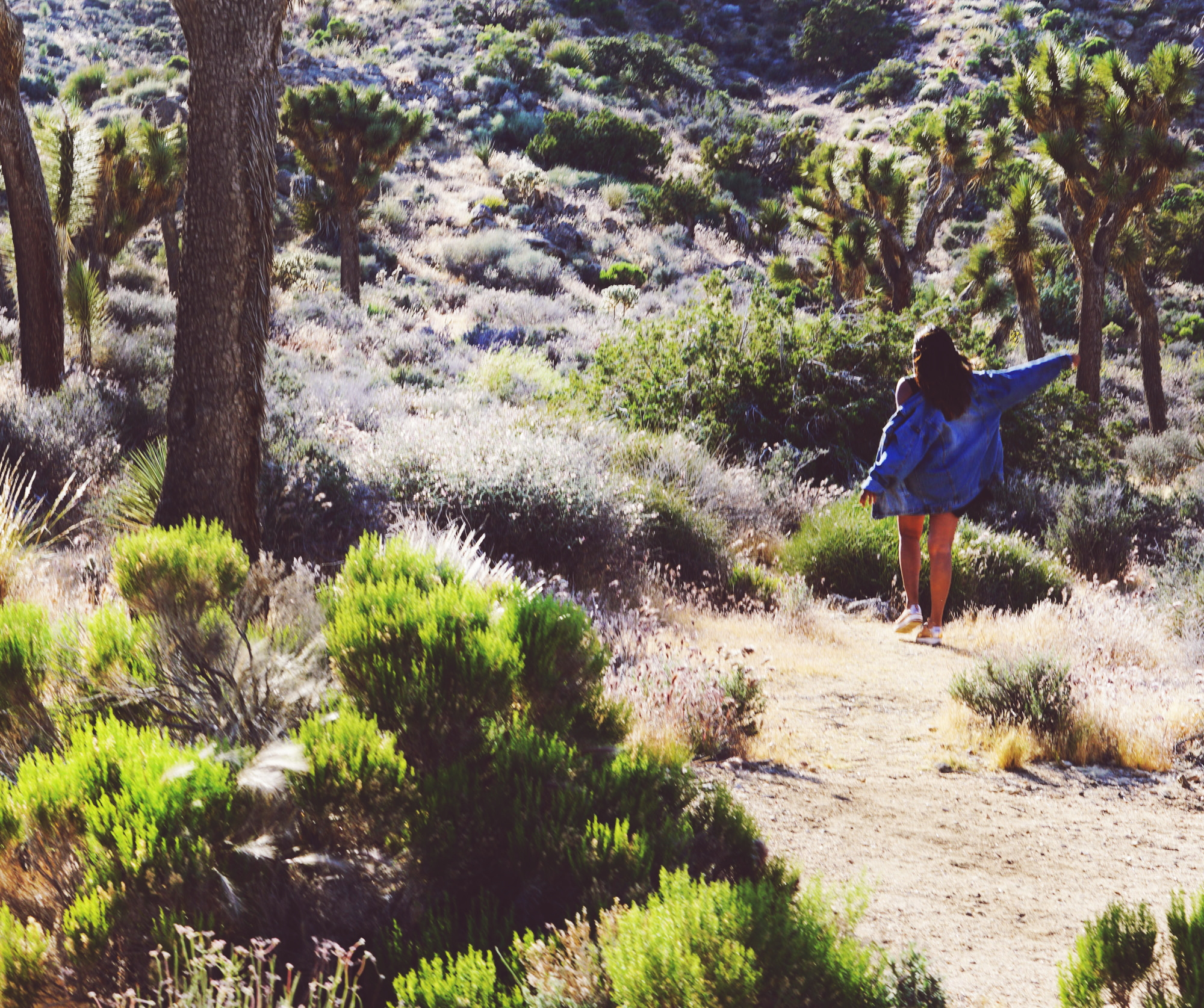 Travel Blogger Afroza Khan in Joshua Tree National Park
