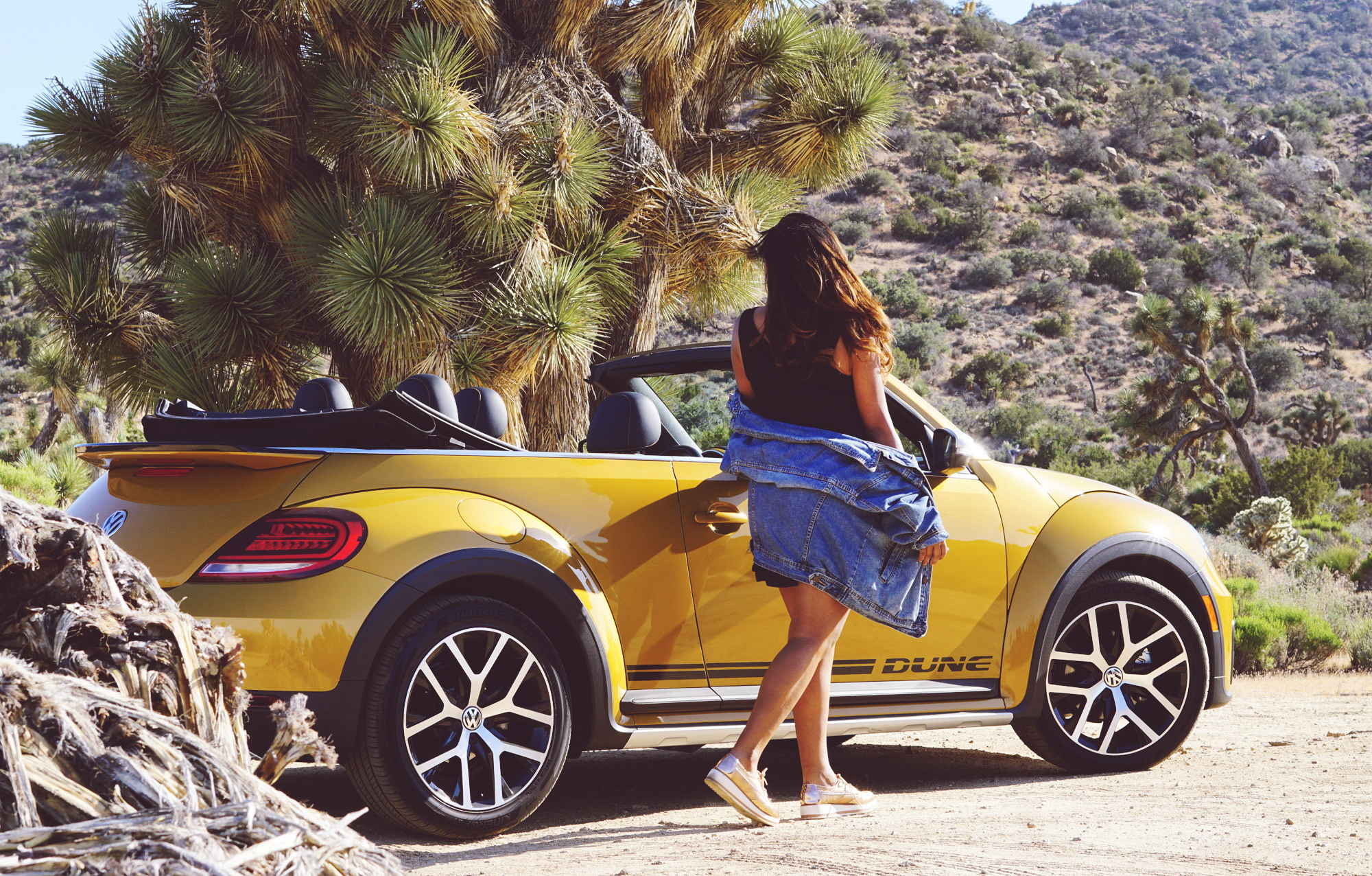 Travel Car Blogger Road Trip in California
