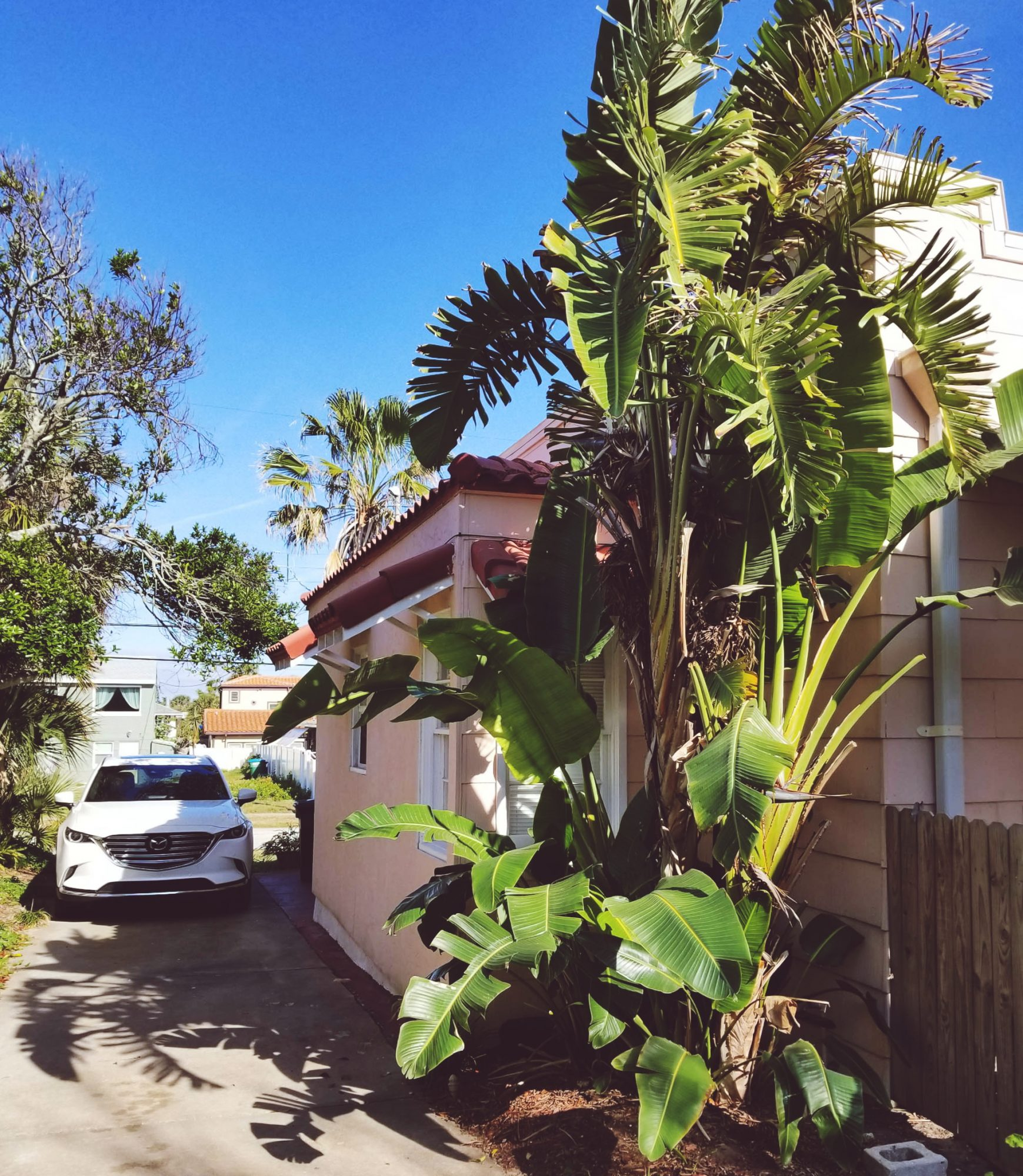 Boho Rustic Airbnb Florida Daytona