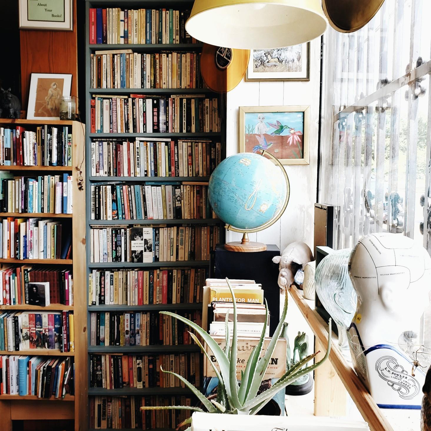 Vintage Book Store Nashville Rhino Bookstore