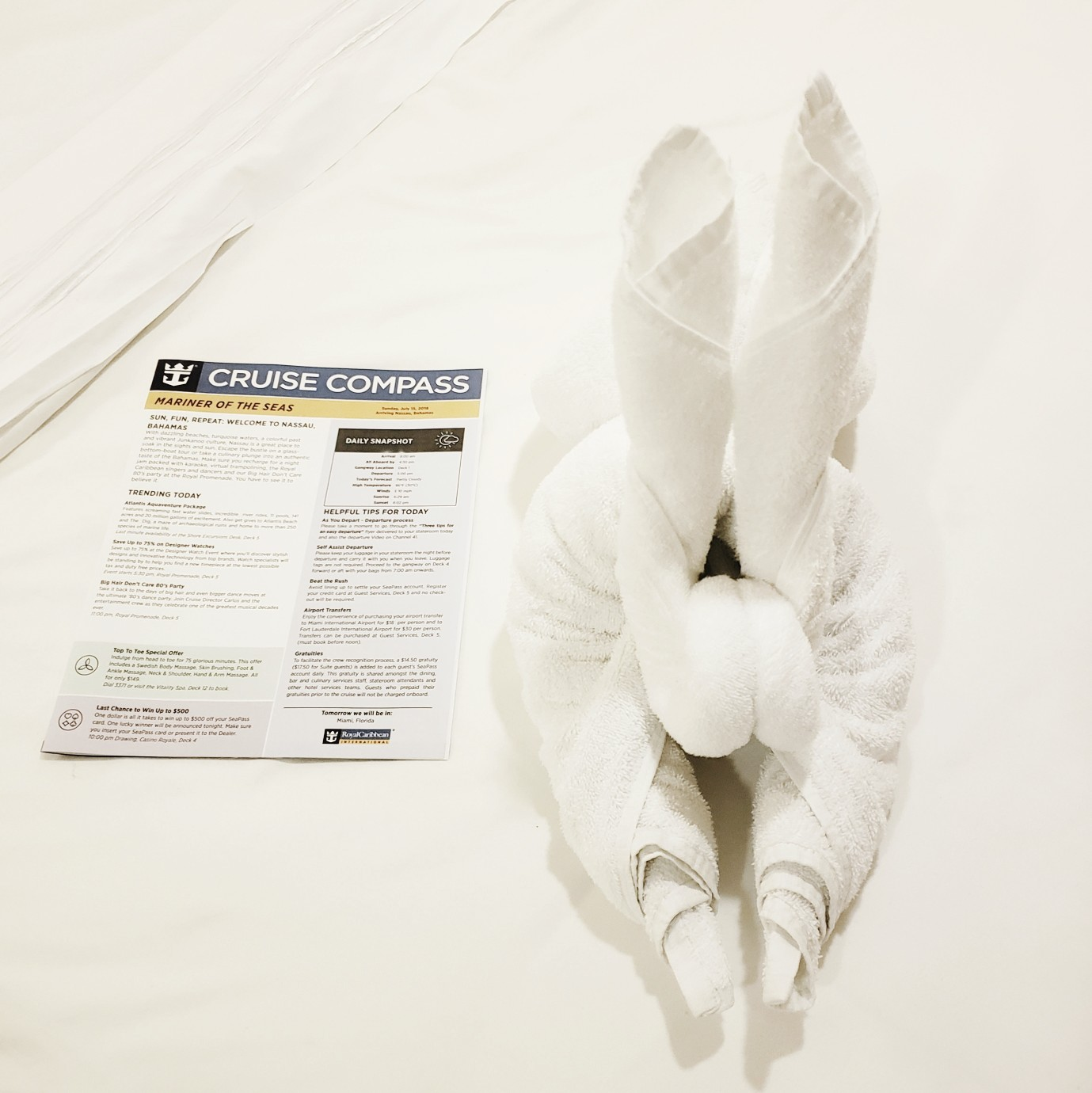 Towel Bunny Cruise Balcony Room Cruise Compass