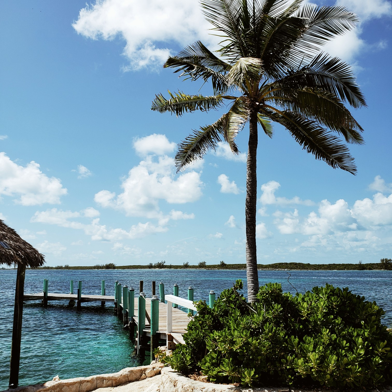 Palm Tree Pearl Island Pier
